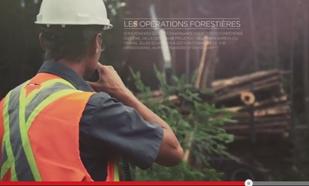 Alex Marchand <br/> ingénieur forestier